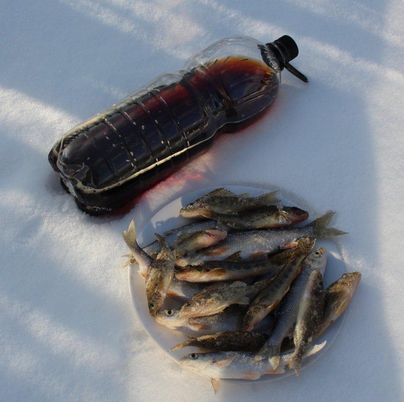 Разновидности малых рыбок, малых рек Сибири.