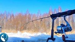 Ловля плотвы на зимний фидер. Первый раз ловлю зимой на фидер
