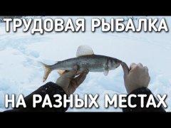 Трудовая рыбалка в разных местах
