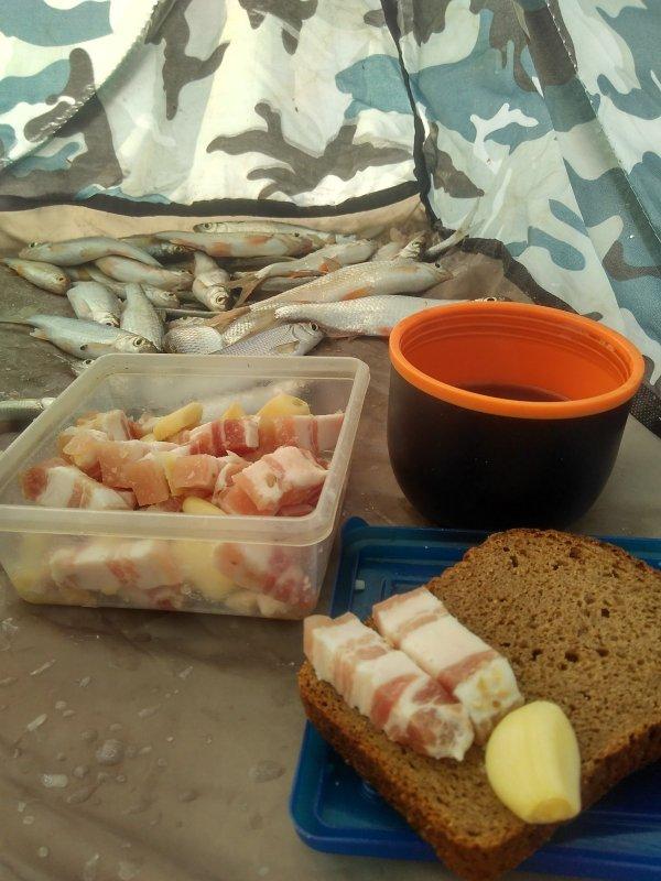 Пока у рыбы перерыв, у меня обед.
