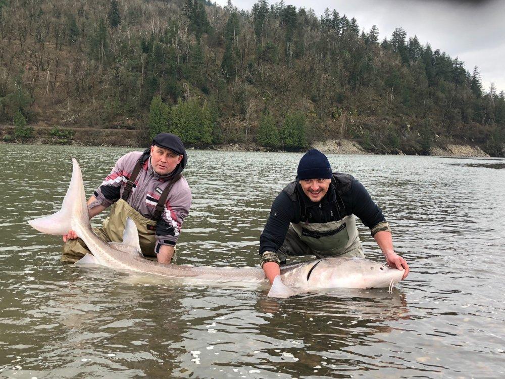 Я поймал рыбу своей мечты ,вес 100кг,длинна 2,35метра