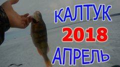 Весенняя Рыбалка в Калтуке  Ловля Окуня апрель 2018