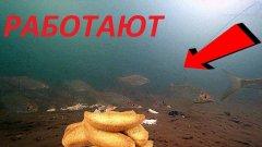 Сухари с секретом ТВОРЯТ ЧУДЕСА!!! Вот это ПРИКОРМКА! Подводная съемка