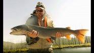 ОХОТА НА ТАЙМЕНЕЙ/Рыбалка на тайменя в Монголии/Часть 3