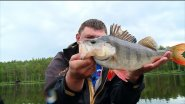 Рыбалка на вращающуюся блесну крупной щуки и окуня кабана / Простая рыбалка на реке с AikoLand TV.