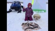 Отличная рыбалка с Соней. Часть 1. Ловля плотвы и окуня на мормышку. Весенняя рыбалка. Fishing.