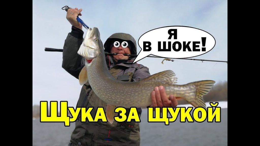Да сколько же здесь щуки? Щука весной ловля на джиг #1. Простая рыбалка в марте на реке Aikoland -TV