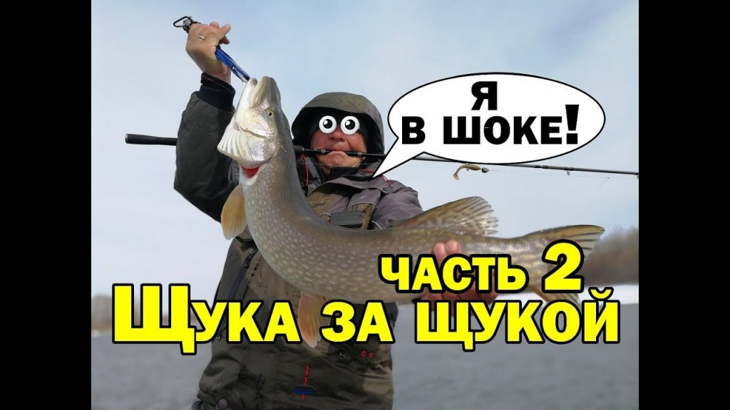 Да сколько же здесь щуки? Щука весной ловля на джиг #2. Простая рыбалка в марте на реке Aikoland TV