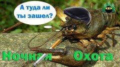 Ночная охота на раков | Night hunting for crayfish