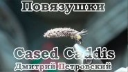 Повязушки. Cased Caddis