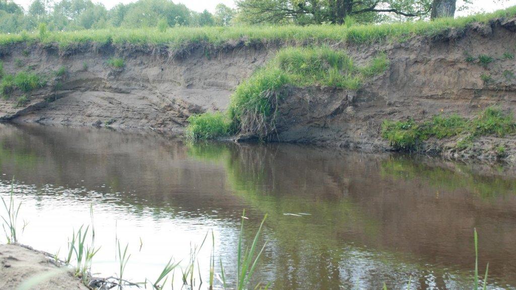 Ловля голавля в микроречке на воблеры Yo-zuri L-Minnow.  Chub of small rivers