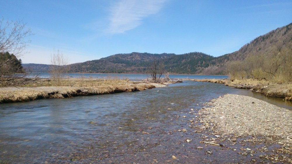 Устье Самыша и Телецкое озеро