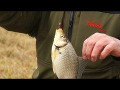 Ловля карася с берега на фидер  Прикормка с чесноком сделала всю рыбалку