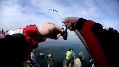 Ловля салаки в Балтийском море. Рыбалка в Калининграде. Балтийск.