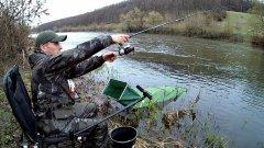 Короткая рыбалка на пикер. Что можно поймать за два часа. (LiveFishing)