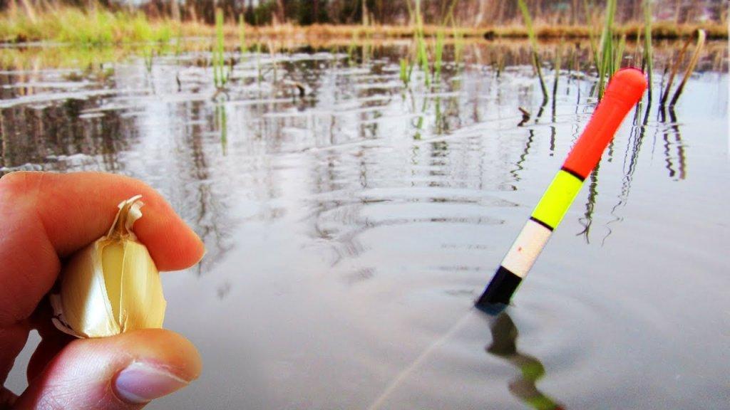 Ловля карася весной на поплавочную удочку