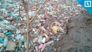 Бутылочная река, мусорные берега