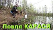 Ловля карася на поплавочную удочку. Рыбалка на лесном озере.
