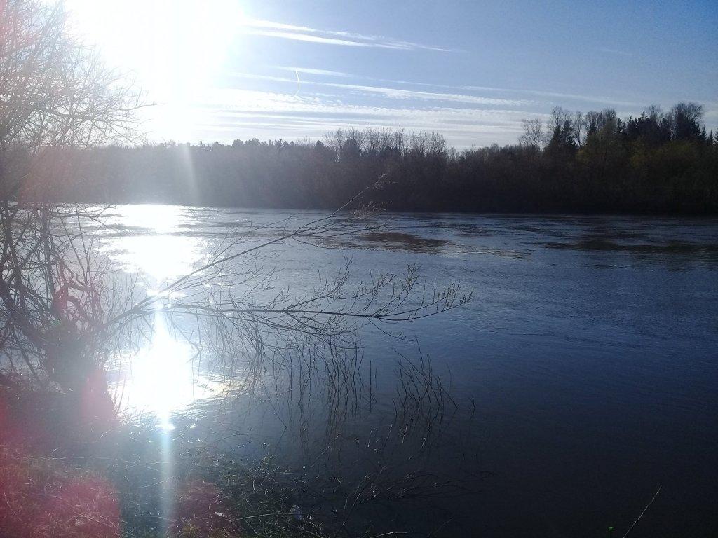 Солнечный денек на реке Иня