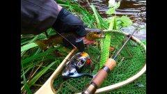 Daiwa Certate 13. Катушка с защитой не только от воды.