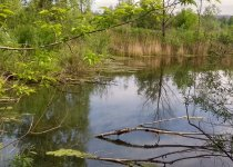 озеро на ИНЕ