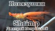 Повязушки. Shrimp