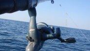 Рыбалка в Абхазии на море кефаль