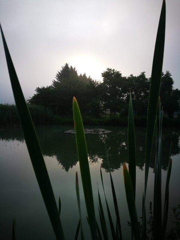 На рыбалке. Восход.