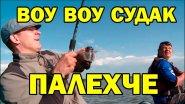 Как отреагировал судак на дешевую резину / Русская рыбалка 2018 с AikoLand TV