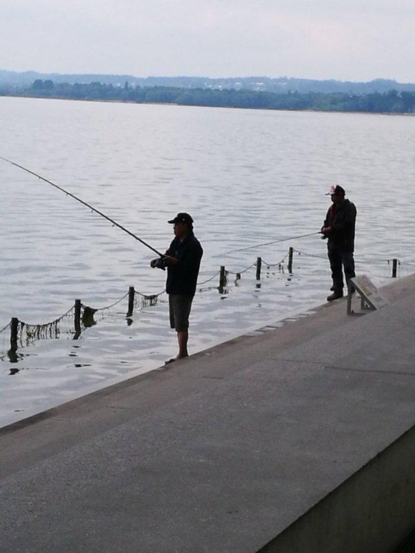 Рыбалка на Бодензее. Австрия, Брегенц.