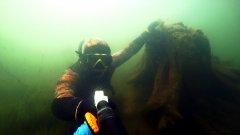 Подводная охота. Отдых в Коми, чем заняться когда погода полная