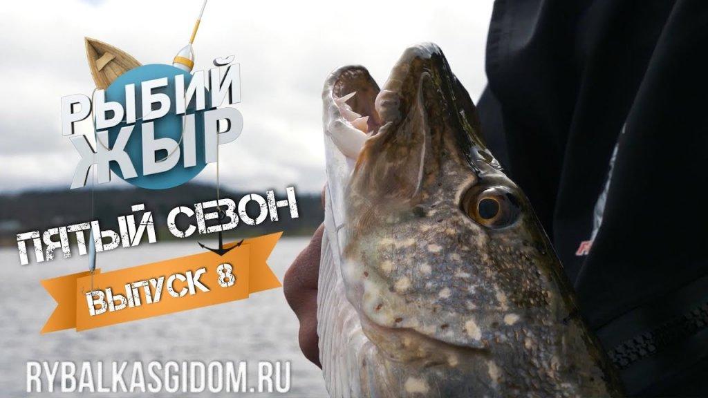 Клев трофейной щуки и рыболовные приметы, в чем связь? Рыбий жЫр 5 сезон выпуск 8