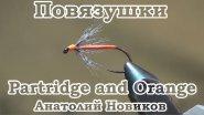 Повязушки. Partridge and Orange