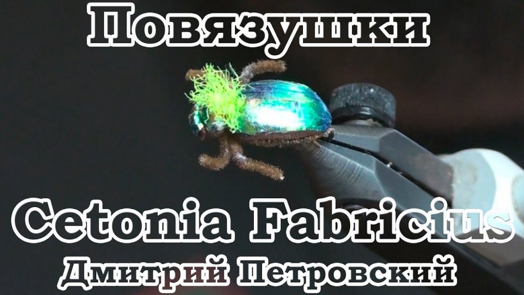 Повязушки. Cetonia Fabricius