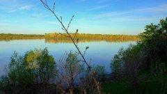 Утро на реке Обь