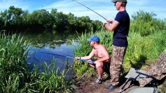 Ловля леща. Рыбалка на реке Дон. (LiveFishing)