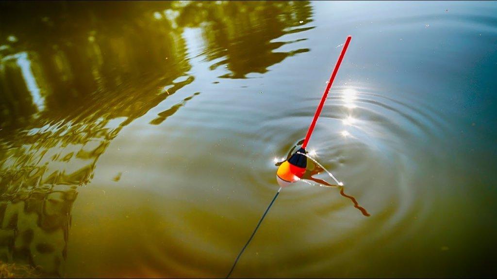 Активный клев карася на утренней зорьке!Душевная вышла рыбалка!
