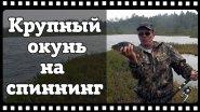 Ловля крупного окуня на спиннинг. Рыбалка на таёжных озёрах.