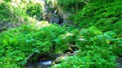 Горный Алтай. Черемшанский водопад