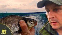 Уловистая бортовая удочка - день третий. 14 кг подлещика за рыбалку!