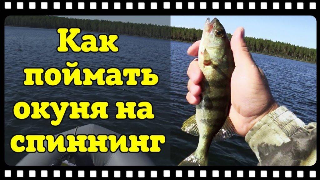"""Бешенный клёв окуня на """"Поганом"""" озере. Как поймать окуня на спиннинг."""