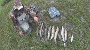 Рыбалка на щуку и хариуса. Со спиннингом по тундровой речке. Fishing.