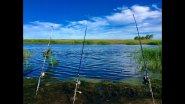 Ч. 2 Сазан и крупный карась |  УХА, ШАШЛЫК | Рыбалка с НОЧЁВКОЙ на реке Чулым