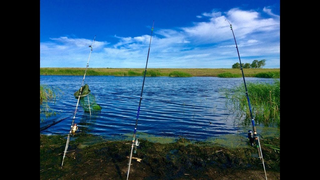 Ч. 2 Сазан и крупный карась    УХА, ШАШЛЫК   Рыбалка с НОЧЁВКОЙ на реке Чулым