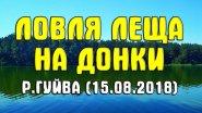 Ловля леща на донки р. Гуйва (15.08.2018). Ловля леща на Кавуновых Дачах