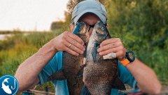Ловля леща в июле на фидер. Рыбалка на канале Варкалю