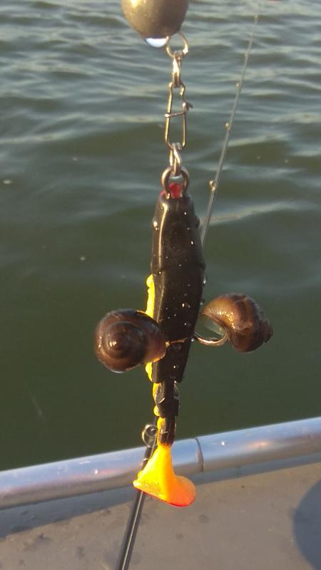 Как одним фото охарактеризовать рыбалку.Жара,рыба бастует.
