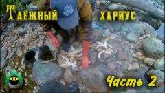Рыбалка на таежной речке (часть 2) | Fishing on the taiga river (part 2)