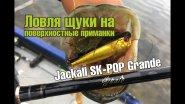 Ловля щуки на поверхностные приманки. Поппер Jackall SK-POP Grande