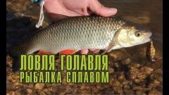 Ловля голавля. Рыбалка сплавом по реке.
